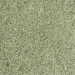 Lichen SH4011
